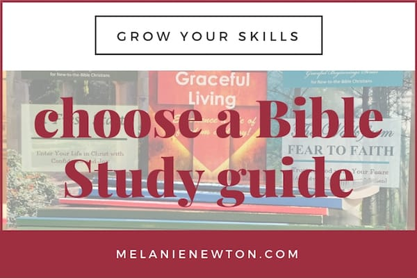 How to choose a Bible Study for yourself or a group. LeadaBibleStudy.com