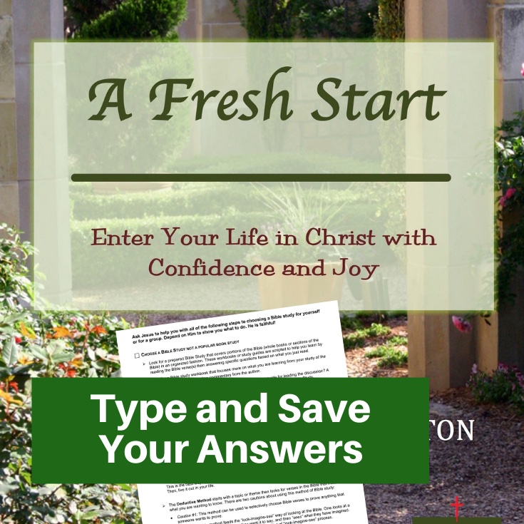 New Christian Bible Study-Interactive Fillable Workbook