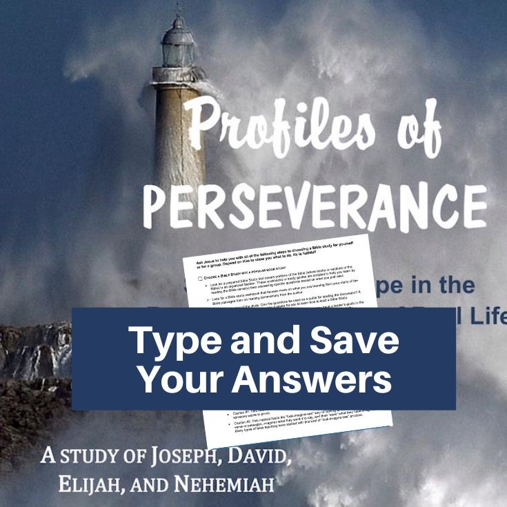 Old Testament Men Bible Study-Interactive Fillable Workbook
