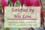 Satisfied by His Love Bible Study. Women who knew Jesus. Joyful Walk Bible Studies. Melanienewton.com.