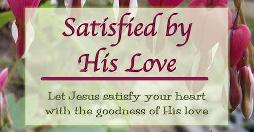 Satisfied by His Love Bible Study of New Testament Women by Melanie Newton-short and easy