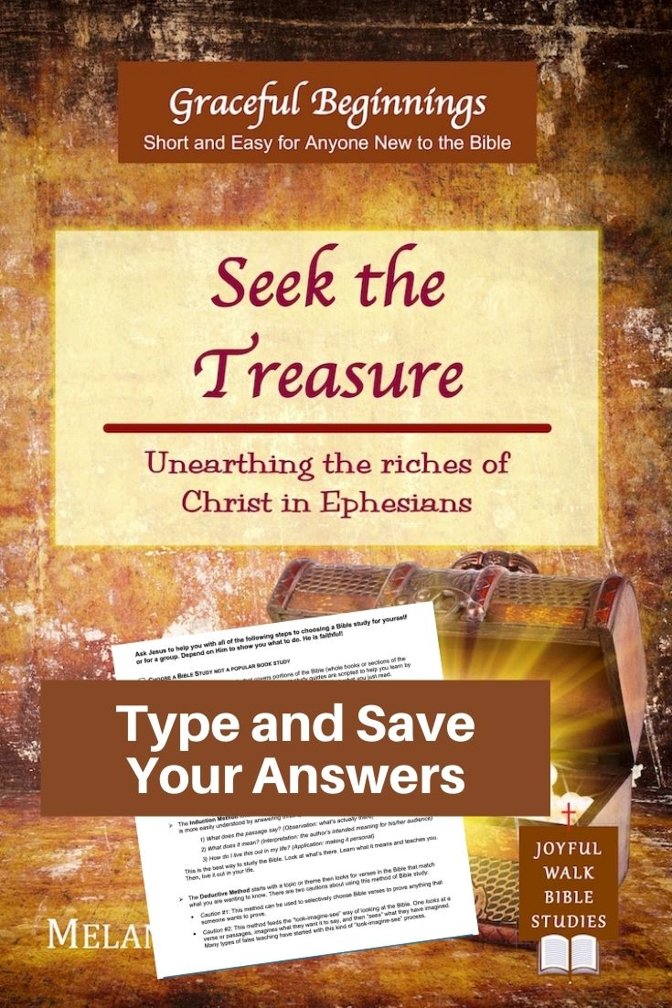Seek the Treasure Bible Study of Ephesians in Fillable Form-Type and save your answers